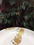 24 karaat goud bord