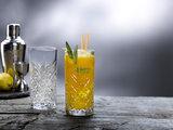Longdrink glas 45 cl Timeless_