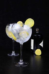 Gin Tonic glas 70 cl set van 6