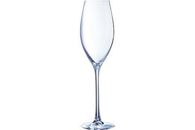 Grand Cepage champagneglas 24cl